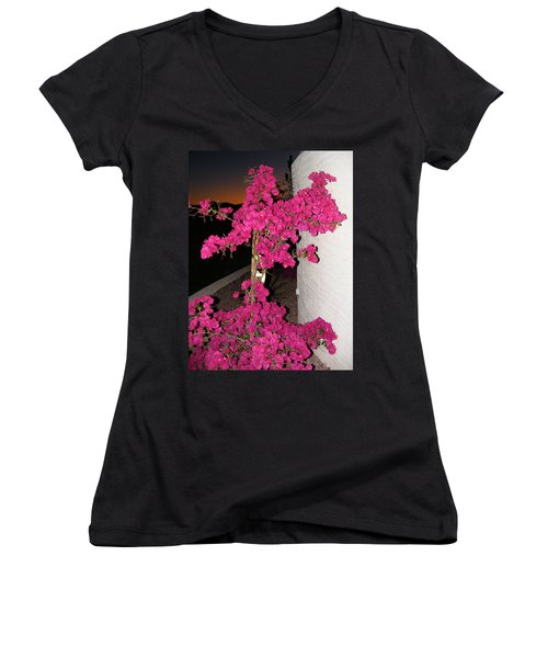 Purple Passion Against Desert Sunset Women's V-Neck T-Shirt (Junior Cut) by Adam Cornelison