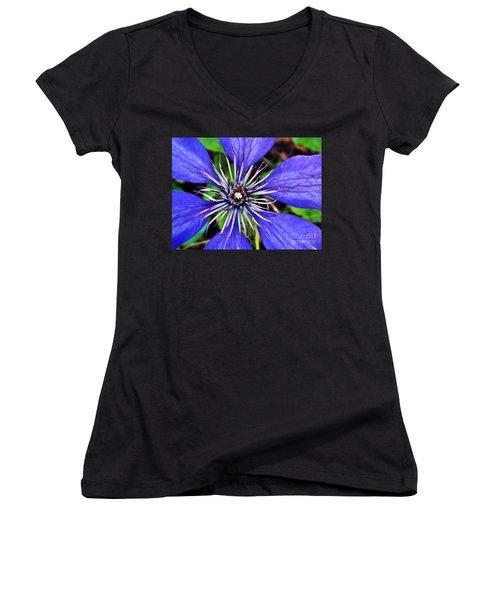 Purple Passion Women's V-Neck T-Shirt (Junior Cut) by Christy Ricafrente
