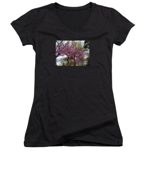Purple Spring Trees Women's V-Neck