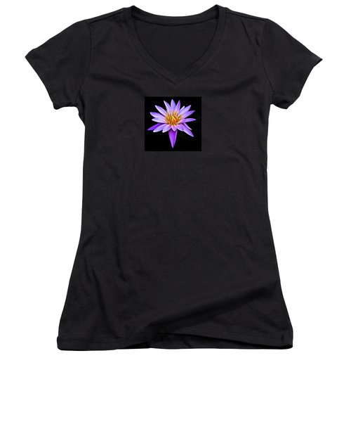Purple Waterlily With Golden Heart Women's V-Neck T-Shirt (Junior Cut) by Venetia Featherstone-Witty