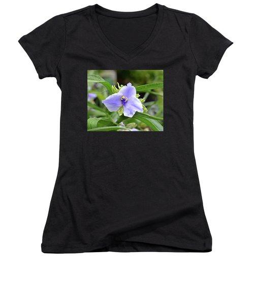 Spiderwort Women's V-Neck T-Shirt (Junior Cut) by Ronda Ryan