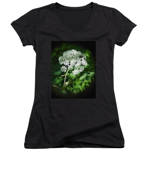 Queen Ann Lace Women's V-Neck (Athletic Fit)