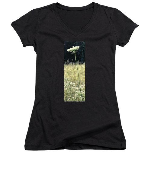 Queen Anne Women's V-Neck