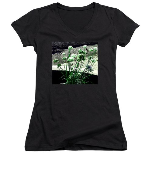 Women's V-Neck T-Shirt (Junior Cut) featuring the photograph Queen Anne's Lace by Lenore Senior