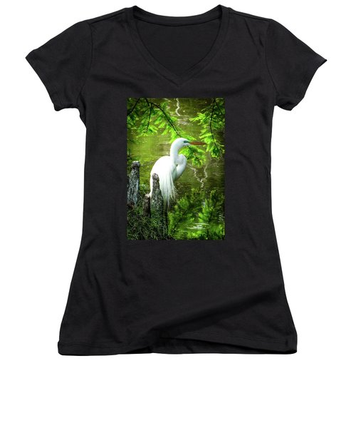 Quiet Moments Of Elegance Women's V-Neck T-Shirt (Junior Cut) by Karen Wiles