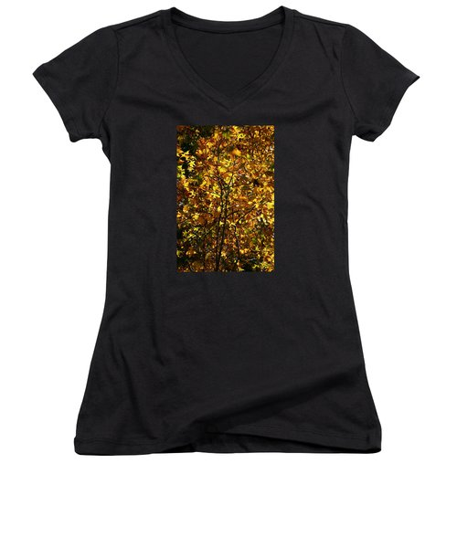 Women's V-Neck T-Shirt (Junior Cut) featuring the photograph Radiant Leaves by Karen Harrison
