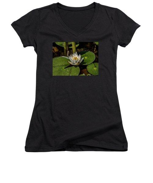 Radiant White Pond Lily  Women's V-Neck