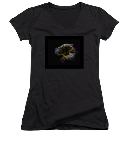 Rain Day Lily 3 Women's V-Neck