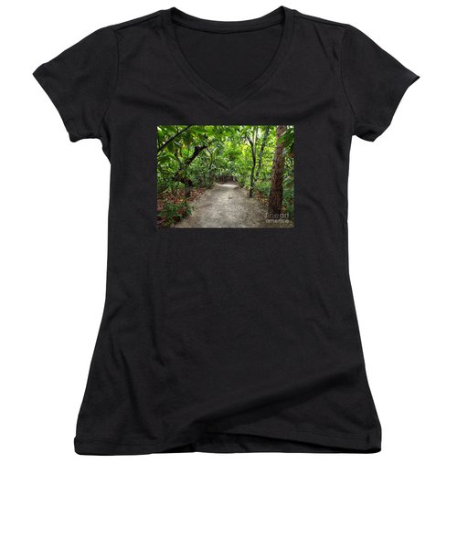 Rain Forest Road Women's V-Neck (Athletic Fit)