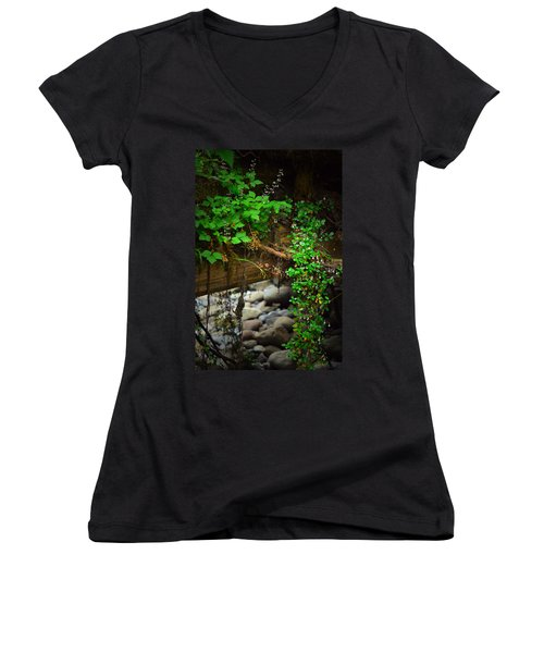 Rain Forest Walk Women's V-Neck T-Shirt