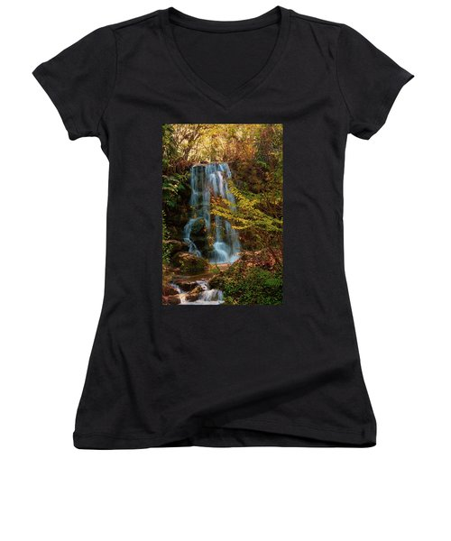 Women's V-Neck T-Shirt (Junior Cut) featuring the photograph Rainbow Springs Waterfall by Louis Ferreira