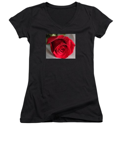 Raindrops On Roses Women's V-Neck T-Shirt (Junior Cut) by Rita Brown