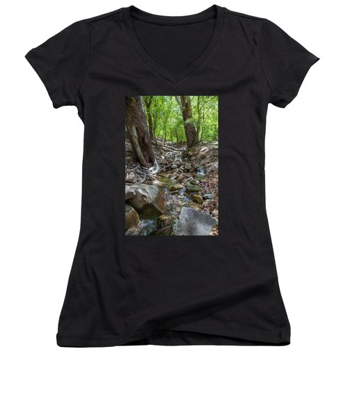 Ramsey Canyon Preserve Women's V-Neck