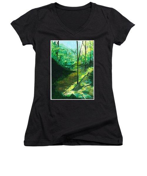 Raven Rocks 3 Women's V-Neck T-Shirt