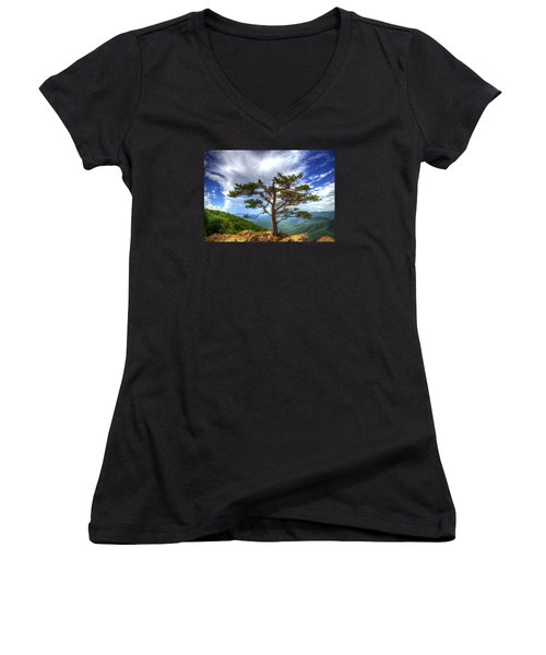 Ravens Roost Tree Women's V-Neck T-Shirt (Junior Cut) by Greg Reed