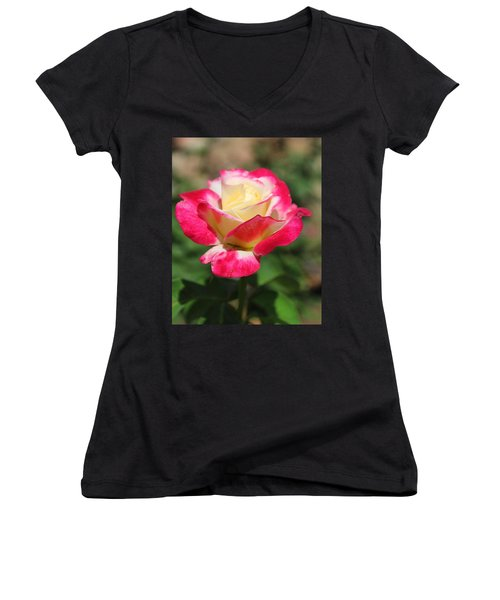 Red And Yellow Rose Women's V-Neck T-Shirt