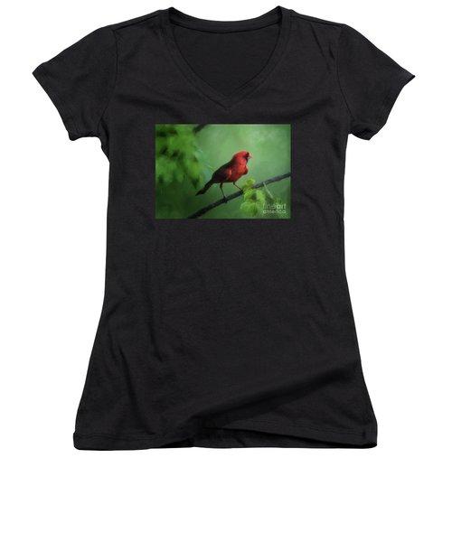 Red Bird On A Hot Day Women's V-Neck T-Shirt (Junior Cut) by Lois Bryan