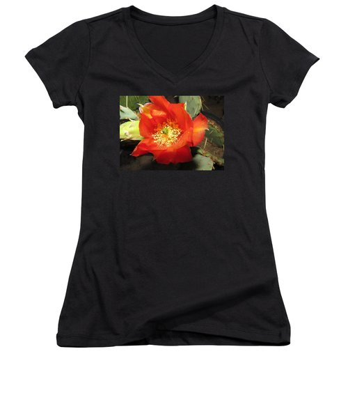 Red Bloom 1 - Prickly Pear Cactus Women's V-Neck T-Shirt