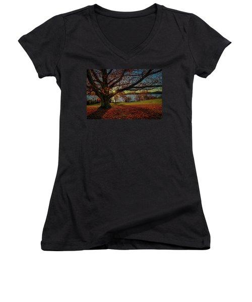 Red Carpet Women's V-Neck T-Shirt (Junior Cut) by Jeffrey Friedkin
