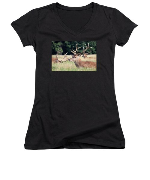 Red Deer Stags Richmond Park Women's V-Neck (Athletic Fit)