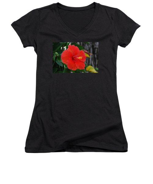 Red Flower Women's V-Neck T-Shirt (Junior Cut) by Rob Hans