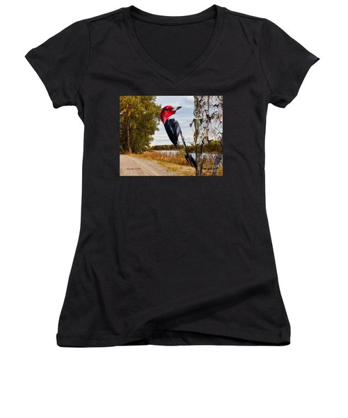 Red Headed Woodpecker In Wilderness Women's V-Neck T-Shirt (Junior Cut) by Annie Zeno