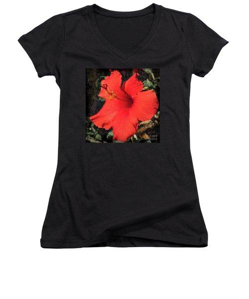 Red Hibiscus Women's V-Neck