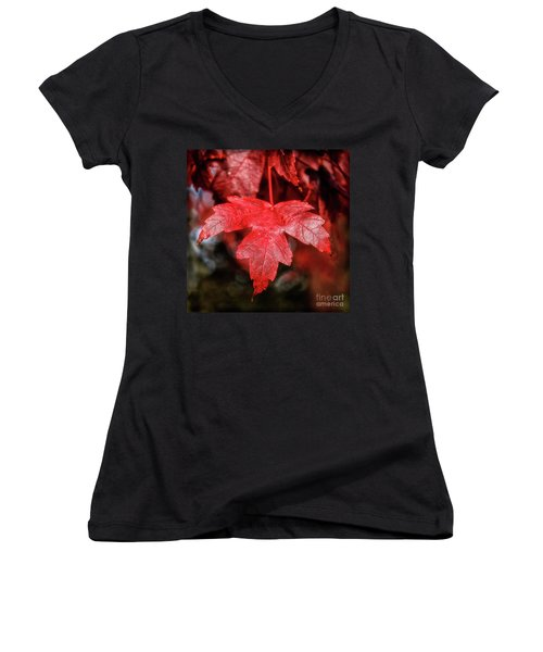Red Leaf Women's V-Neck T-Shirt (Junior Cut) by Robert Bales