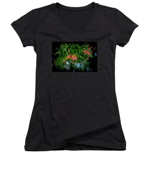 Red Maple Leaves Women's V-Neck T-Shirt