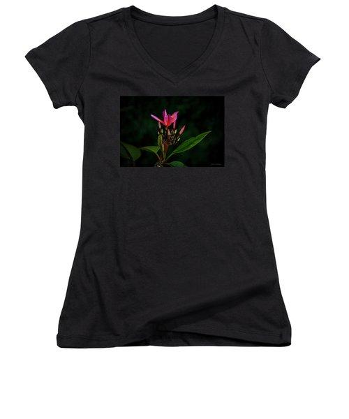 Red Plumeria Women's V-Neck T-Shirt