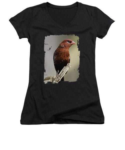 Red - Rojo Women's V-Neck T-Shirt