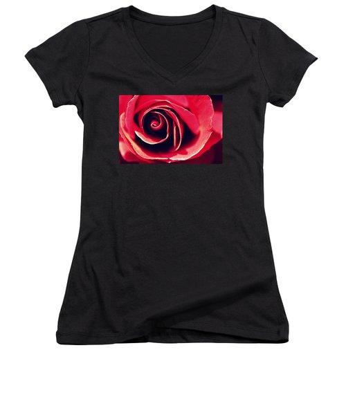 Red Rose Women's V-Neck T-Shirt (Junior Cut) by Joseph Skompski