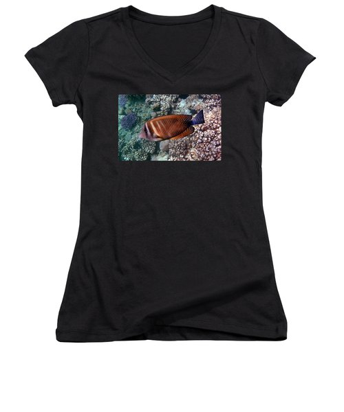 Red Sea Sailfin Tang 3 Women's V-Neck (Athletic Fit)