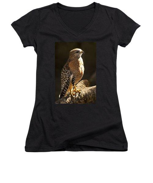 Red-shouldered Hawk Women's V-Neck