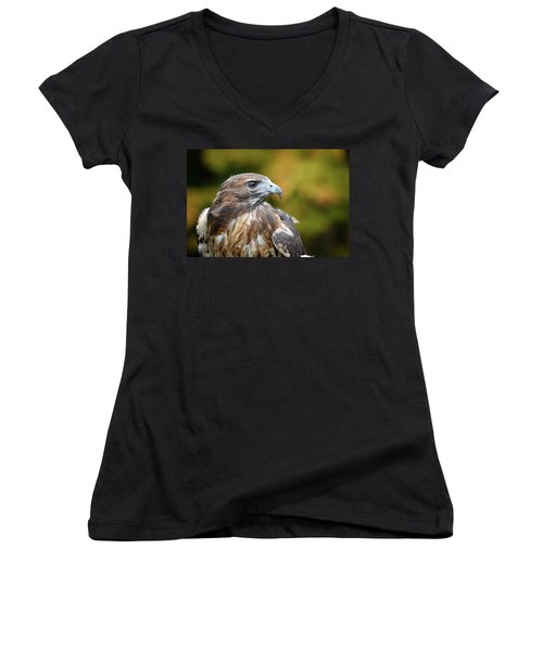 Women's V-Neck featuring the photograph Red Tail Hawk by Michael Hubley