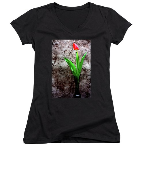 Red Tulip Women's V-Neck T-Shirt (Junior Cut) by Gray  Artus