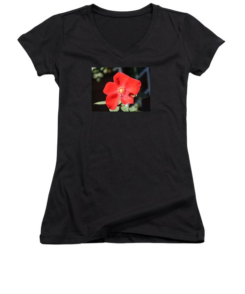 Red Velvet Women's V-Neck T-Shirt