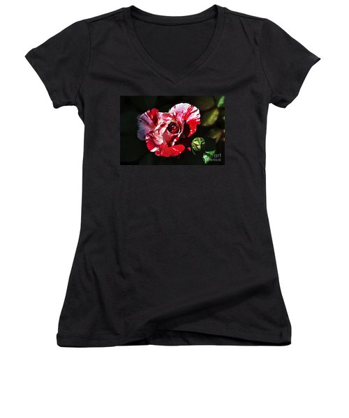 Red Verigated Rose Women's V-Neck T-Shirt (Junior Cut) by Clayton Bruster