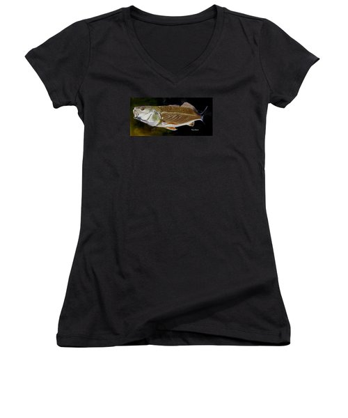 Women's V-Neck T-Shirt (Junior Cut) featuring the painting Redfish Study  by Phyllis Beiser