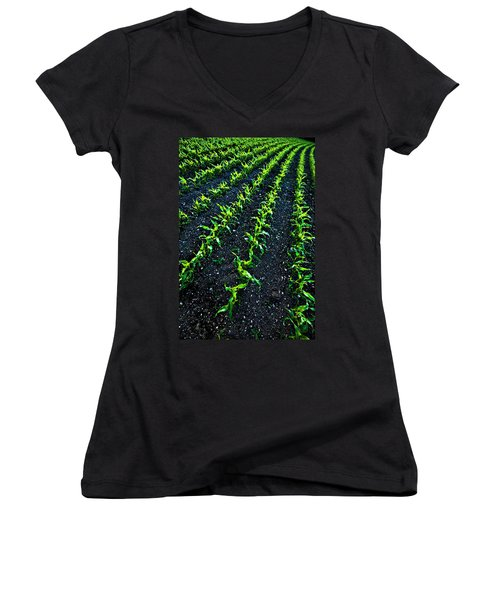Regimented Corn Women's V-Neck
