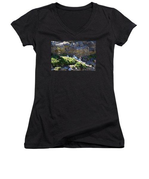 Relaxing In The Shade Women's V-Neck T-Shirt (Junior Cut) by Dacia Doroff