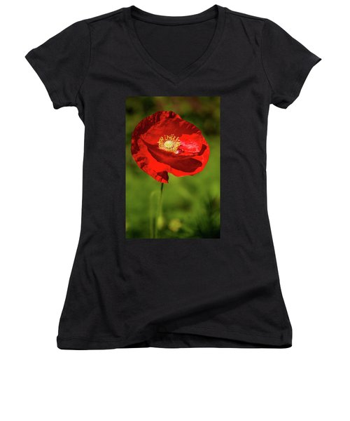 Remembering Women's V-Neck