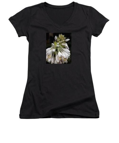 Women's V-Neck T-Shirt (Junior Cut) featuring the photograph Renaissance Lily by Marie Hicks