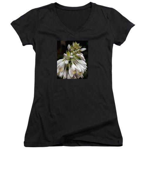 Renaissance Lily Women's V-Neck T-Shirt (Junior Cut) by Marie Hicks