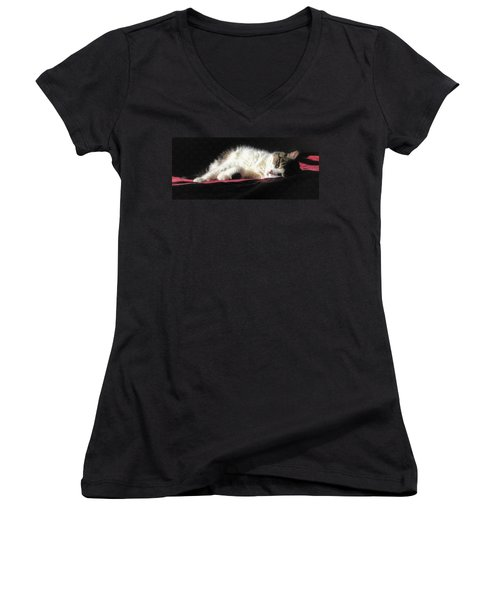 Resting Cat Women's V-Neck T-Shirt (Junior Cut) by Maciek Froncisz