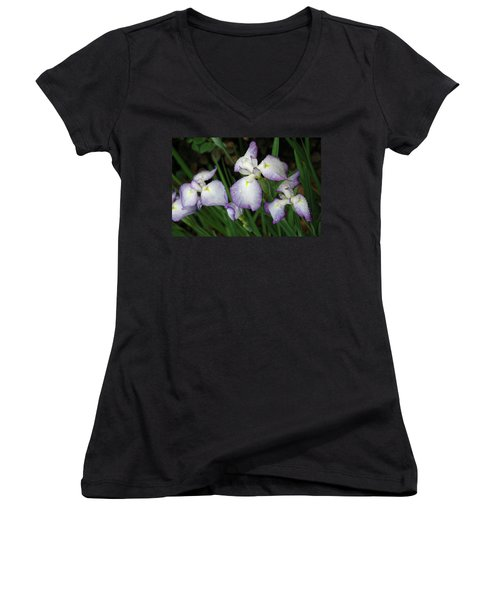 Rhapsody Women's V-Neck T-Shirt (Junior Cut) by Marie Hicks