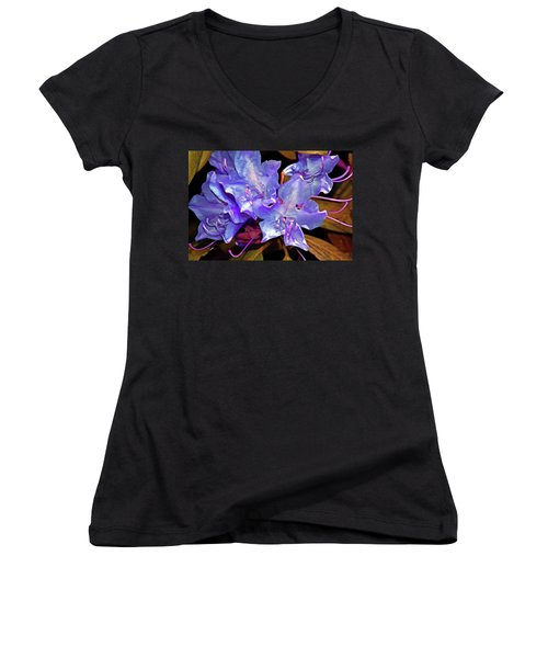 Rhododendron Glory 6 Women's V-Neck