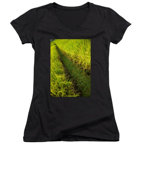 Rice Field Hiking Women's V-Neck