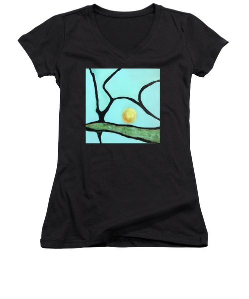 Ripening IIi Women's V-Neck T-Shirt (Junior Cut) by Mary Sullivan