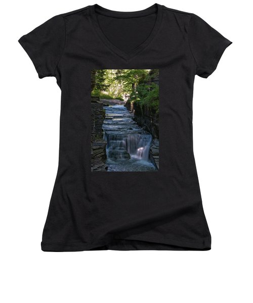 Robert Treman 0512 Women's V-Neck T-Shirt